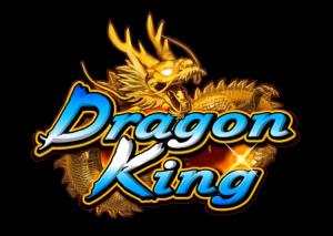 DragonKing1337
